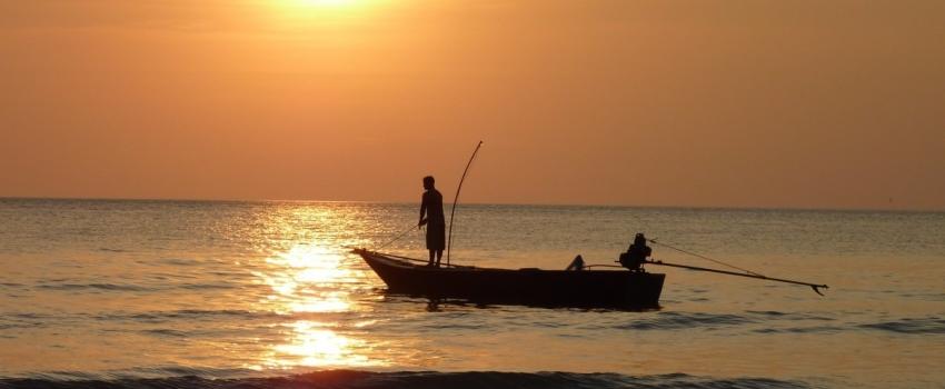 Secretaria de Agricultura e Abastecimento participa de roda de conversa sobre comercialização da pesca artesanal